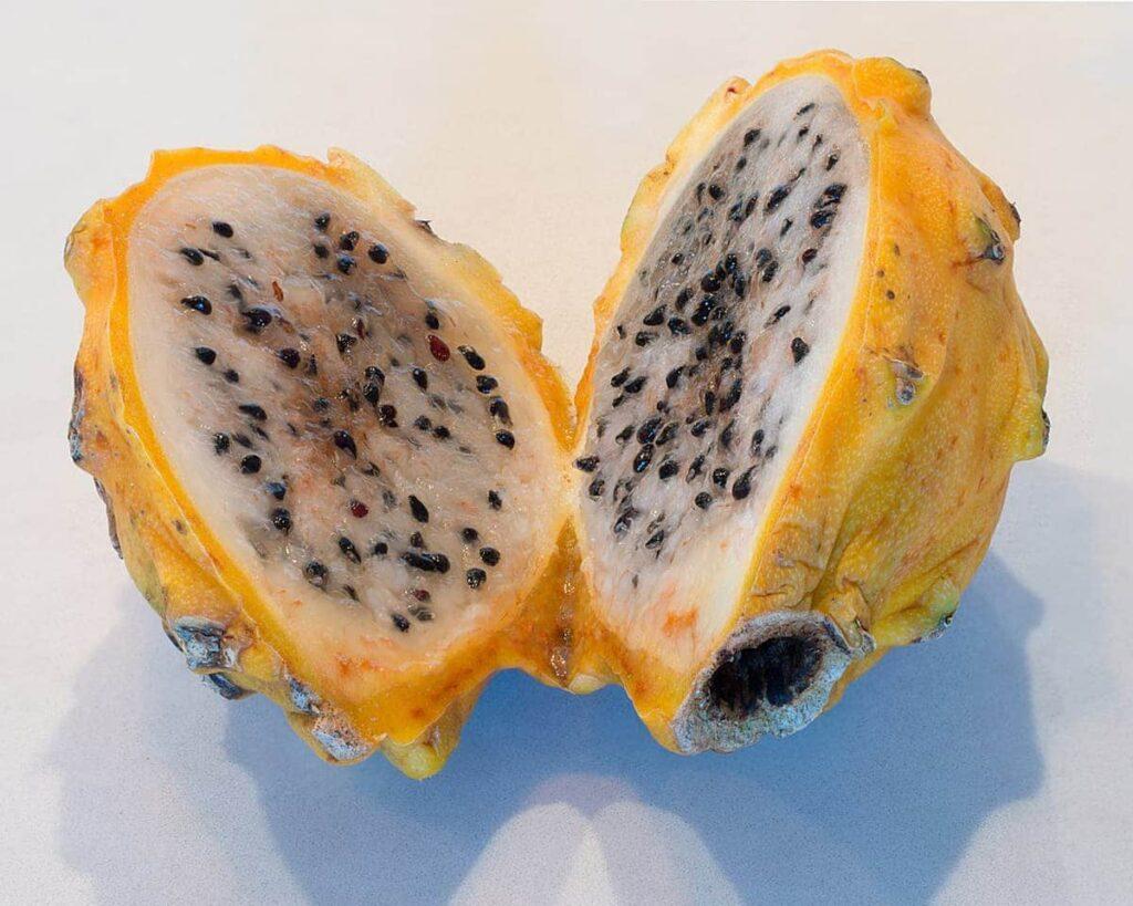 Yellow-Dragon-Fruit-Plant-Pitaya-Peppyflora-Product-02-moz