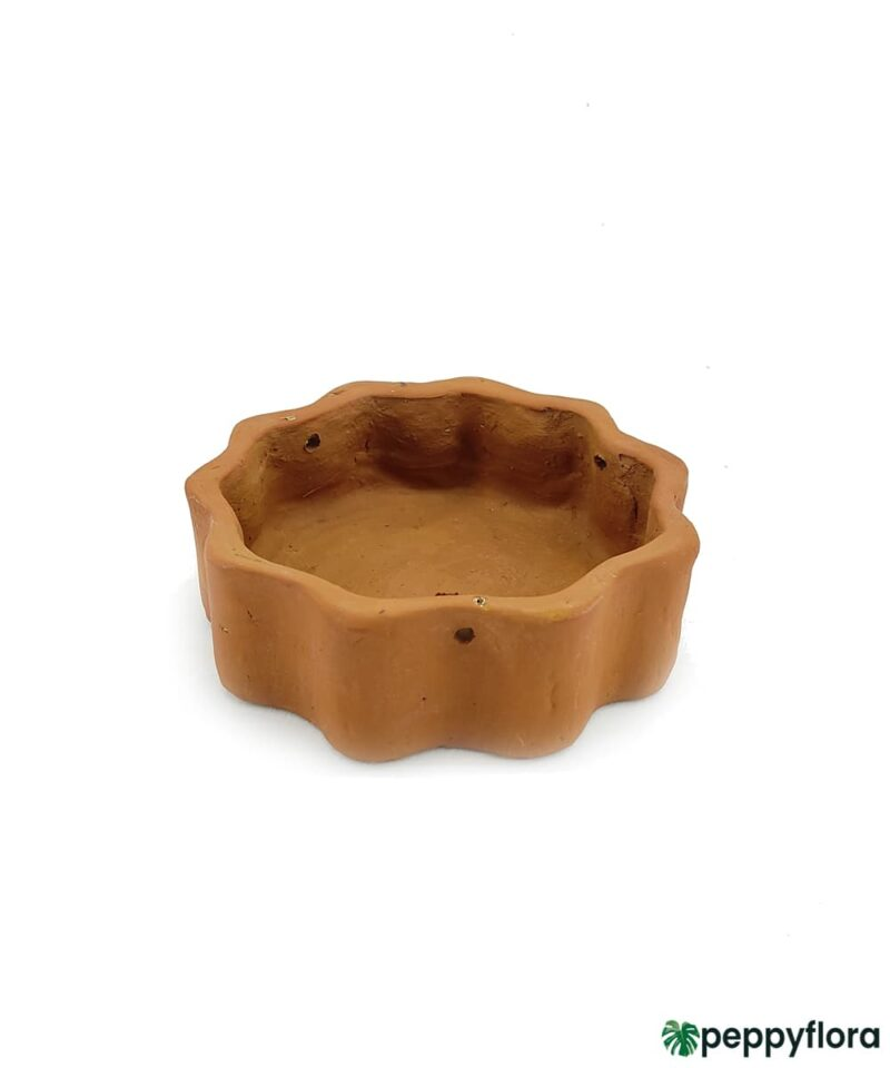 Terracotta-Round-Shape-Hanging-Curvy-Planter-#16712-Product-Peppyflora-01-a-Moz